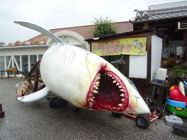 半身ひっくり返っている巨大ザメ